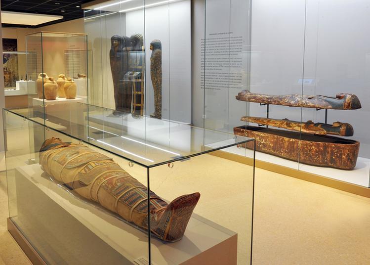 Visites-zoom Des Collections Permanentes Du Musée De Tessé à Le Mans