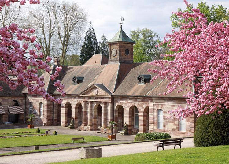 Visitez L'établissement Thermal à Luxeuil les Bains
