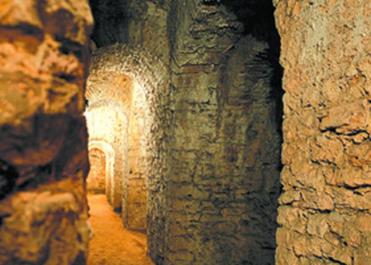 Visitez Le Jardin Et La Galerie De Contremine Du Bastion Saint-pierre à Chalon sur Saone