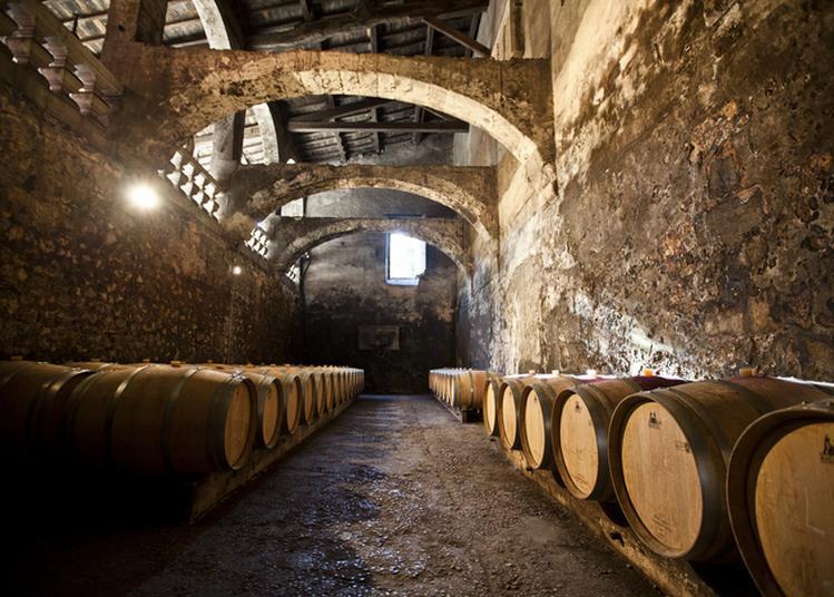 Visitez Les Caves D'un Château Du Haut-médoc Et Dégustez Ses Vins ! à Le Taillan Medoc