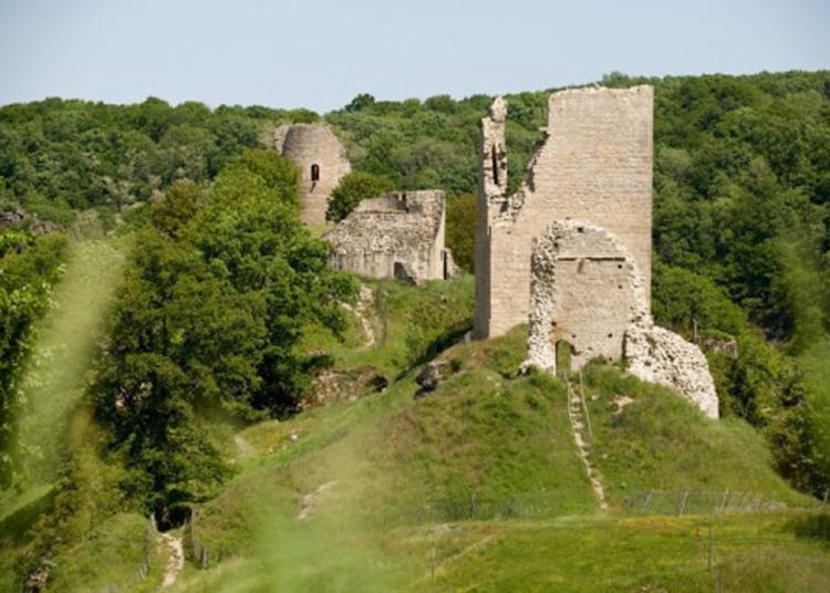 Visitez Librement Cette Forteresse Médiévale à Crozant