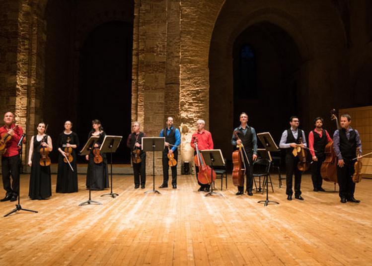 Vivaldi, Le Prince Du Concerto à Toulouse