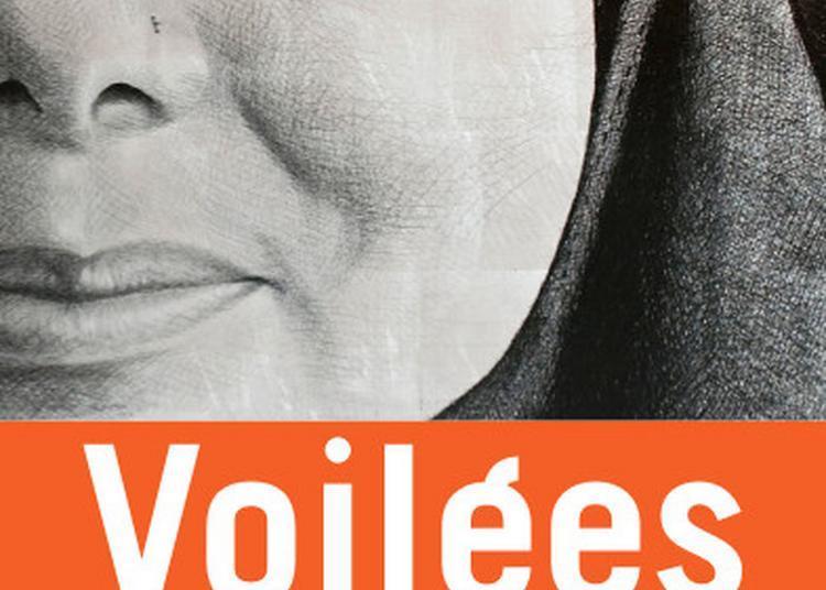 Voilées, Oeuvre De Pierre David - Que Dévoilent L'art Et La Recherche ? à Clermont Ferrand
