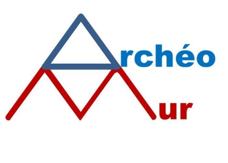 Vote Citoyen Sur Un Projet De Fresque Archéologique Monumentale à Lyon