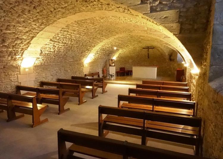 Vous Découvrirez L'histoire Et L'architecture De Cet édifice, Ainsi Que La Crypte à Orléans