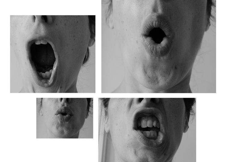 Vox, le mot sur le bout de la langue à Vanves