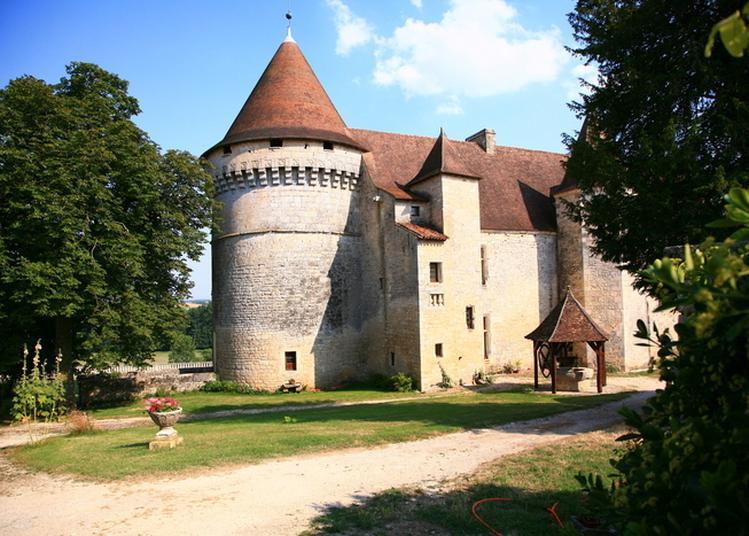 Voyagez Au Temps Des Châteaux Forts... à Bayers