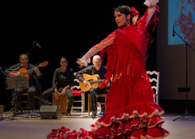 Voz y Emocion flamenco avec El Cuadro Medialuna à Grenoble
