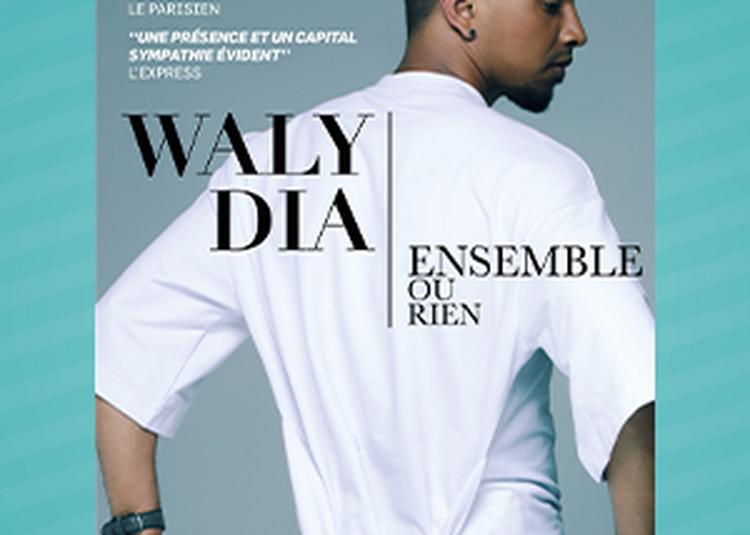Waly Dia - Festival L'Air d'en Rire (85) à La Mothe Achard