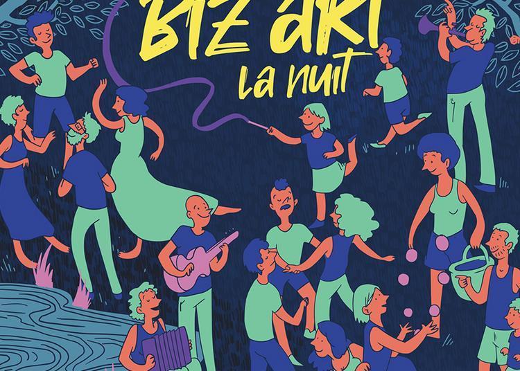 Festival Bazar le Jour Biz'art la Nuit 2019