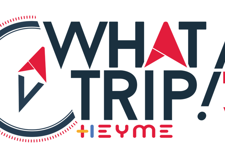 What A Trip ! Heyme Festival 2020