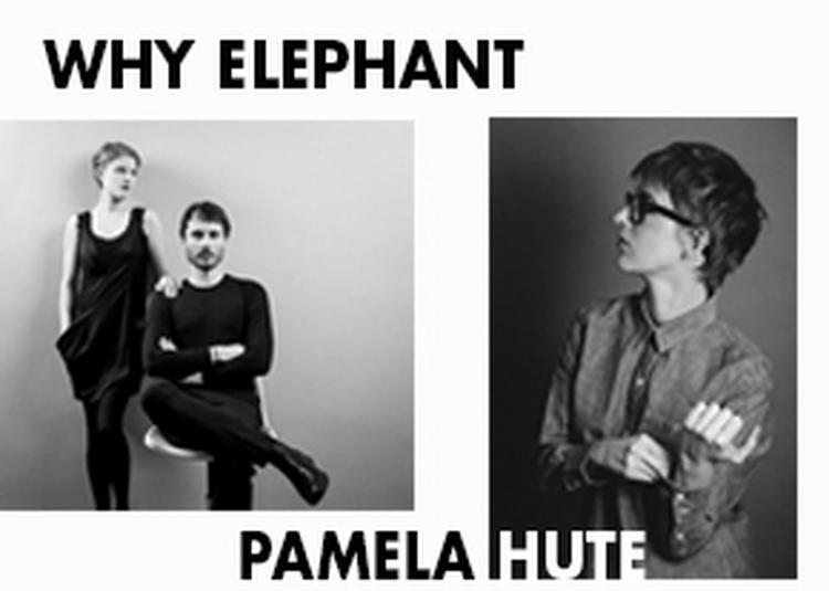Why Elephant + Pamela Hute à Montreuil