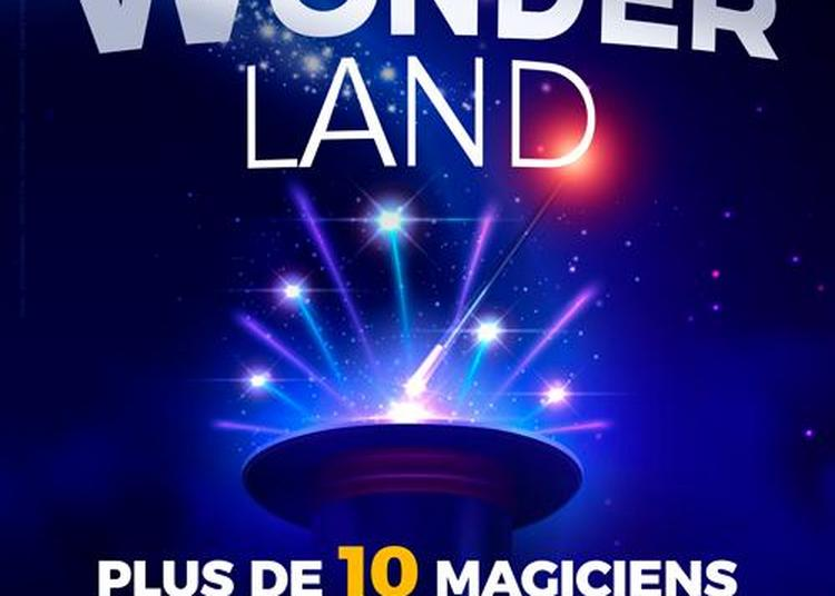 Wonderland, Le Spectacle à Besancon