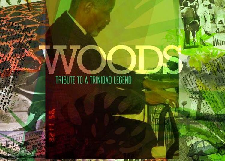 Woods Trinidad Legend' DJ Ness à Paris 19ème