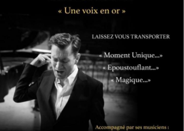 Yann Golgevit - Une Voix En Or à Cugnaux