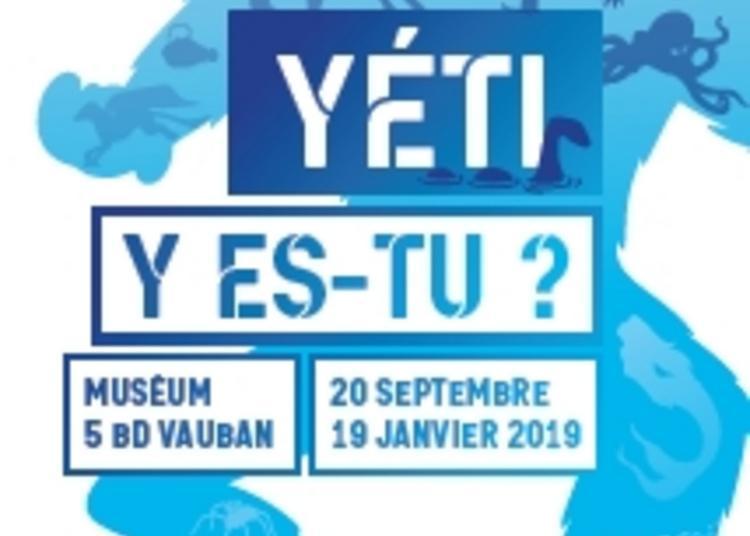 Yéti Y Es-tu ? à Auxerre