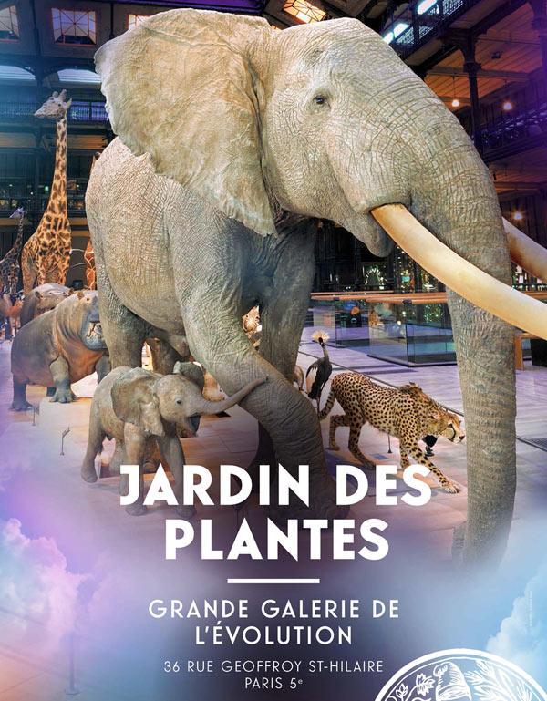 Exposition Grande Galerie De L Evolution A Paris Lundi 31 Decembre